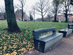 Benches in parks XXX
