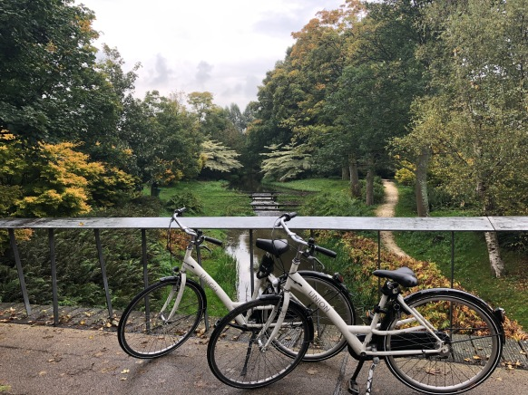 Lovely spot in Westerpark