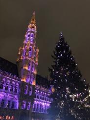 Real natural Christmas tree