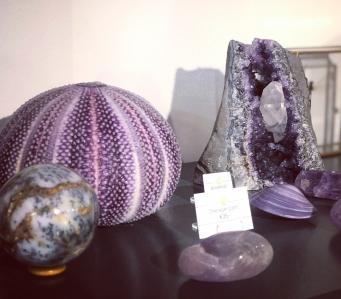 Purplemania of rocks and shells 💜